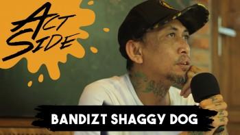 Bandizt (Shaggy Dog / Animal Friends Jogja)