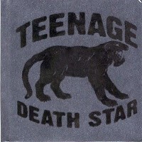Band Indie :  Teenage Death Star – Album Longway To Nowhere (2008), Single