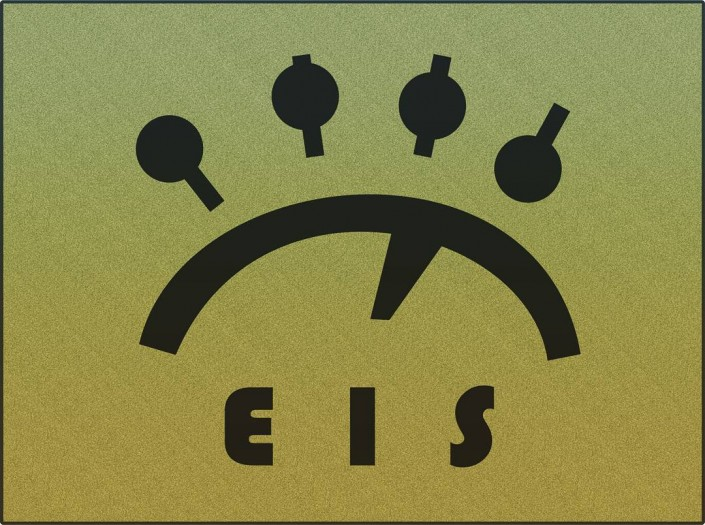 The EIS