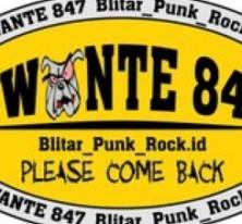 SWANTE 847 PUNK ROCK