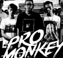 Pro Monkey