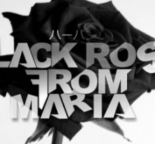 BLACK ROSE FROM MARIA