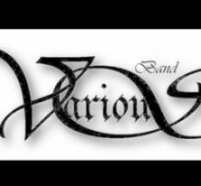 VariouS Band