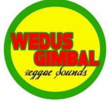 WEDUS GIMBAL