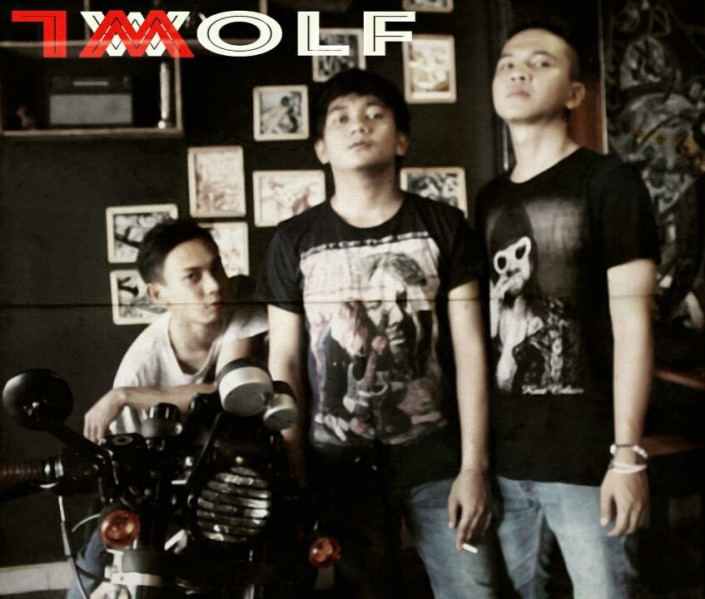 WOLF OWL