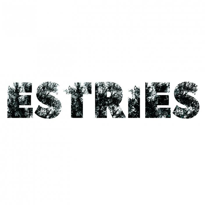 Estries