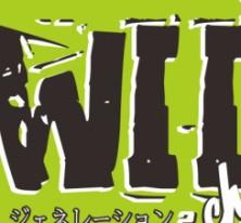 Wiichan
